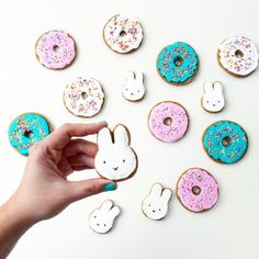MIFFY COOKIES by Coco Cake Land