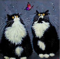 Забавный кот бабочка