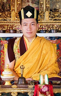 H.H. 17th Karmapa Trinley Thaye Dorje will be visiting London on the 14th and 15th July, 2012, accompanied by Lama Jigme Rinpoche.
