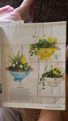 Sieve flower baskets