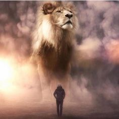 Artist Imagines a World Populated By Gigantic Animals Surreal Photos) is part of Giant animals - Artist Imagines a World Populated By Gigantic Animals Surreal Photos) World's largest collection of cat memes and other animals Giant Animals, Cute Animals, Wild Animals, Stuffed Animals, Lion Love, Lion Wallpaper, Lion Pictures, Animal Pictures, Surreal Photos