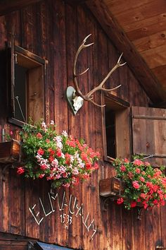 Elmau Alm Cabin in the Alps Lake Cabins, Cabins And Cottages, Countryside Fashion, Alpine Chalet, Summer Cabins, Window Box Flowers, Alpine Style, Chalet Style, Mountain Living