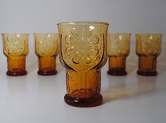 Libbey Country Garden Juice Glasses Set of 5