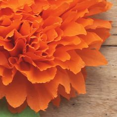 Beautiful mexican crepe paper flowers for Ofrenda. Cempasuchil or marigolds are important on el Dia de los Muertos.