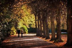 Couple Walking In Stephens Green - Dublin Print by Barry O Carroll Grafton Street, Couples Walking, Dublin City, Fine Art America, Fashion Photography, Instagram Images, Country Roads, Gallery, Artwork