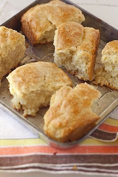 Buttermilk Rusks - soft rolls baked and slow dried inthe oven. Best eaten dunked in tea. They were originally stowed in saddlebags as travel food.