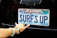 surfs up !