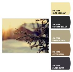 Cozy Winter Day    #CorinneGail  www.corinnegailinteriordesign.com