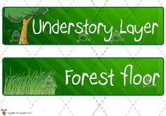 Forestry research reports ideas