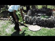 T.J. showing how to open and get the water from a coconut. With a brief tour of our garden. #healthy #coconutwater #energy #cancer    http://www.facebook.com/pages/TJ-Natural-Lifestyle-Brown/223554474355288?sk=wall=12    http://naturalwellnessmovement.blogspot.com/    https://www.facebook.com/groups/SCNWG/    http://www.wix.com/sicklecellcantstopme/sickle-cell-natural-wellness-group-...