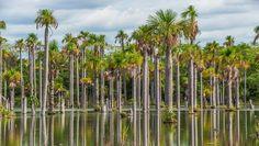 Nobres: um paraíso do Mato Grosso ainda pouco conhecido