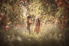 Oranges in San Diego. - I'm so happy to work with Elliott and Mia!! My dreams come true!! Thank you Lisa and Suzy!!