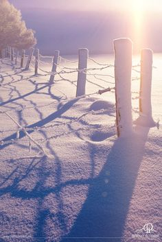 Winter Morning by Bernd Schiedl on 500px