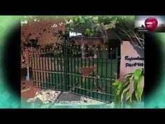 ரெய்டு:இரவோடு இரவாக Aquarium, Politics, Outdoor Structures, Goldfish Bowl, Aquarium Fish Tank, Aquarius, Fish Tank