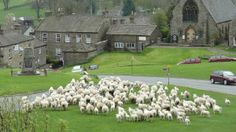 The Yorkshire Dales village of Reeth, let's hope they pen the sheep up before the riders come through! Stage 1 of Le Grand Depart, Tour de France 2014.