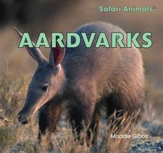 Kids-will-love-learning-about-this-strange-looking-animal-with-a-funny-sounding-name-The-book-contains-loads-of-information-about-an-aardvarks-life-from-its-habit-of-slurping-up-ants-and-termites-with-its-long-tongue-to-the-underground-burrow-in-which-this-nocturnal-animal-sleeps-the-day-away Nocturnal Animals, Safari Animals, Cute Animals, African Buffalo, Curious Creatures, Aleta, Animal Books, Book Week, Reading Levels