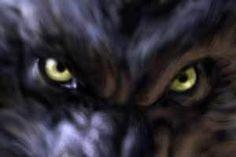 Rawr! - werewolves Photo