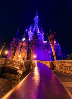 Some cool photos of Cinderella Castle! Disney World Fireworks, Disney World Fl, Disney Day, Disney Cruise Line, Disney Magic, Disney Parks, Disney Theme, Disney Stuff, Disney World Resorts