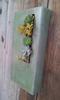 succulent concrete wall art.jpg - Concrete and Steel Gallery - 5 Feet from the Moon