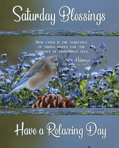 """SATURDAY BLESSINGS: Hebrews 11:1 (1611 KJV !!!!) """" Now faith is the substance of things hoped for, the evidence of things not seen."""" HAVE A RELAXING DAY !!!! Now Faith Is, Faith In God, Saturday Quotes, Happy Saturday, Faith Is The Substance, Monday Blessings, Days Of Week, Blessed Quotes, King James Bible"""