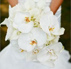 ramos de novia orquideas