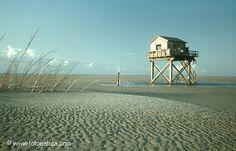 Trouwen op een zandplaat in de waddenzee | Engelsmanplaat, Dongeradeel (Friesland)