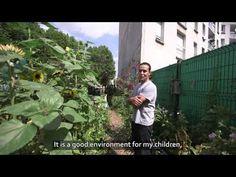 Grand Paris et biodiversité urbaine : Vers une métropole nature