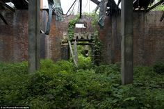 Part of the ruins on North Brother Island. The island is still off-limits, inhabited only by birds.