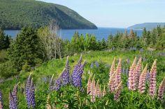 Cape Breton Island in Nova Scotia, Canada.