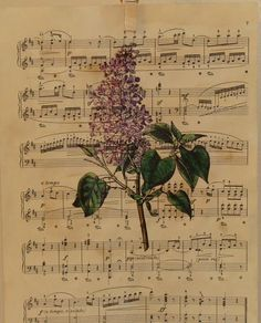 """Antique: your own sheet music, and add a botanical"