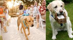 Best ring bearer on the planet...your best friend