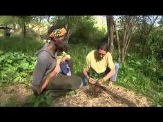 Parcours de vie (émission france 3. 5mn) d' Eric Escoffier formateur en permaculture. entre les Alpes maritimes et le Var. Réseau de formation.