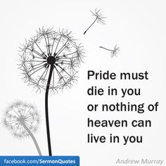 Pride must die in you or nothing of heaven can live in you. -Andrew Murray