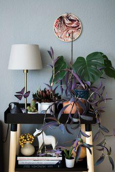 Urban Jungle Bloggers: Plant Shelfie II · Happy Interior Blog