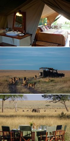 Big five viewing is rife at this wonderful camp, located right in the heart of the Masai Mara. Book with Africa Sky today. Game Lodge, Camps, Holiday Travel, Lodges, Kenya, South Africa, Travel Inspiration, Safari, African