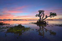 Island of the Giants, Iloilo, Philippines