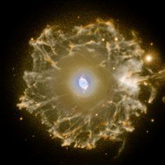 Halo of the Cat's Eye Nebula
