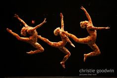 Cirque do Soleil at the Royal Albert Hall. Photo copyright Christie Goodwin, all rights reserved