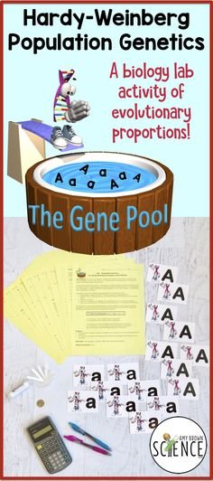 "In this lab simulation, students will learn how the Hardy-Weinberg Principle is used to detect changes in the gene pool, and how changes in the gene pool leads to evolution. Students in the classroom will mimic a breeding population of individuals. Students will ""mate"" using allele cards to show the outcome of genotypes and phenotypes in future generations."