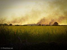 Burning off sugar cane fields in Chiredzi, Zimbabwe