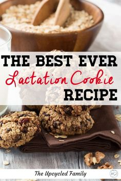 Looking for the Best Lactation Cookie Recipe that also doesn't shoot your health and fitness goals? Try this naturally good (refined sugar-free) lactation cookie that's both delicious and good for you while giving a boost to your milk supply! Oatmeal Raisin Lactation Cookies Recipe, Healthy Lactation Cookies, Lactation Recipes, Easter Chocolate, Christmas Chocolate, Vanilla Recipes, Chocolate Recipes, Baby Food Recipes, Cookie Recipes