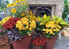 Fill large containers to overflowing with fall mums, ornamental grasses and perennials. Pick up tips for planting containers at The Garden Club.