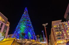 Celebrate Christmas at National Harbor