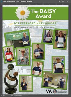 21 Daisy Award Ideas Daisy Award Ideas Award Display