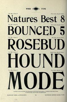 Book of type specimens. Comprising a large vari...