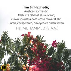 Islamic Quotes, Ramadan, Wise Words, Allah, Diy And Crafts, Christmas Tree, Holiday Decor, Iphone, Botany