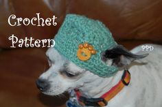 """Crochet A Long - Summer Dog Hat"" Come join in the fun!!!"