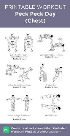Free weight workout - Peck Peck Day (Chest) my visual workout created at WorkoutLabs com Cable Workout, Gym Workout Chart, Workout Log, Gym Workout Tips, Workout Schedule, Workout Plans, Free Weight Workout, Weight Training Workouts, Dumbbell Bicep Workout