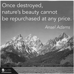 Once destroyed, nature's beauty cannot be repurchased at any price. -Ansel Adams