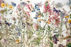 Su Blackwell (British, b. 1975, Sheffield, UK, based London) - Wild Flowers Of The British Isles IX (+detail), 2013 Book Sculptures